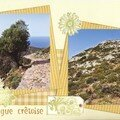 Iles grecques (46) garrigue crêtoise