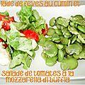 Salade de fèves au cumin pour un dîner végétarien
