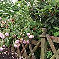 Une clôtur