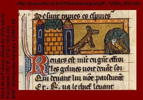 renard-poules-BNF