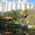 Jardin Japonnais sur centre