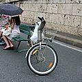 Amoureux, vélib, Paris plage 14_4586