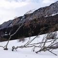 Le col de Romeyère en Isère (photo sécembre 2008)