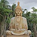 L'<b>humanisme</b> et le bouddhisme