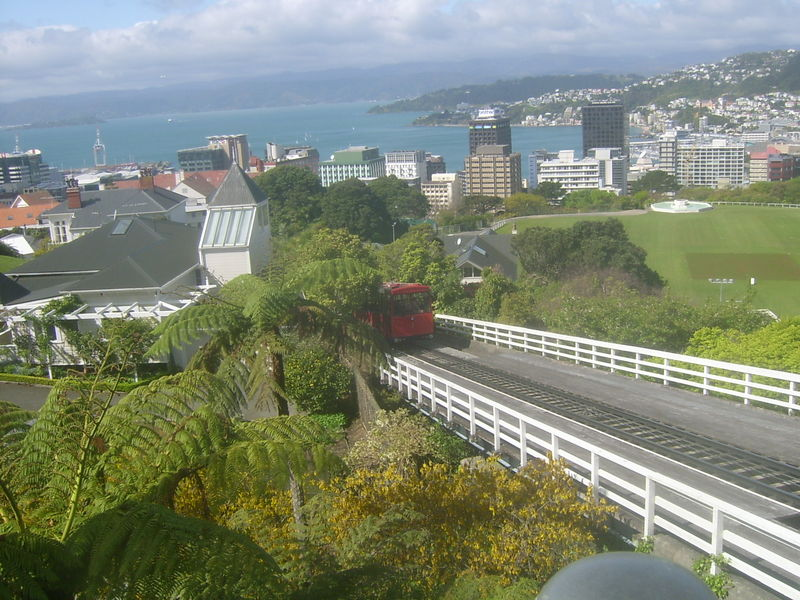 wellington (septembre 2009) 005