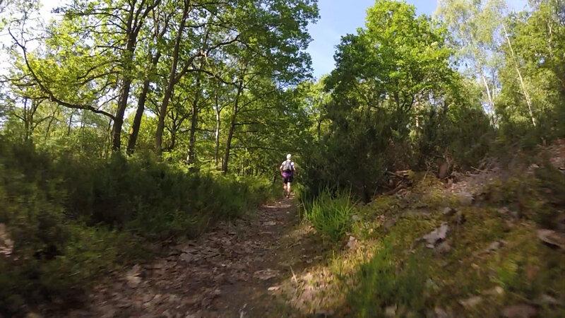 Trail de l'Orangerie de Bonnelles _ 21