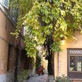 roma vicolo di Bologna
