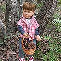 Pierre dans les bois