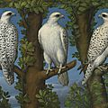 Lombard Master, <b>1540</b> – 1560, Portrait of a gyrfalcon, viewed from three sides
