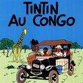 Tintin, le grand nègre blanc