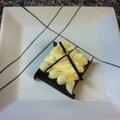Duo chocolat coco et passionnément mangue2