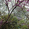 Croisière sur le Fleuve Jaune : Fengdu