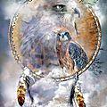 Rose des vents amérindienne 3