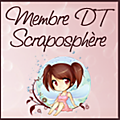 .DT Scrapopshère