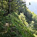 Un ravin au sommet du Serròt de Boish.