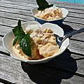Yaourt glacé au melon et à la noix de coco (<b>frozen</b> yogurt)