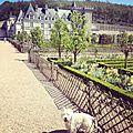 Dog-friendly place : château de villandry