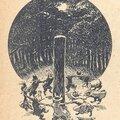 La forêt et la bruyère