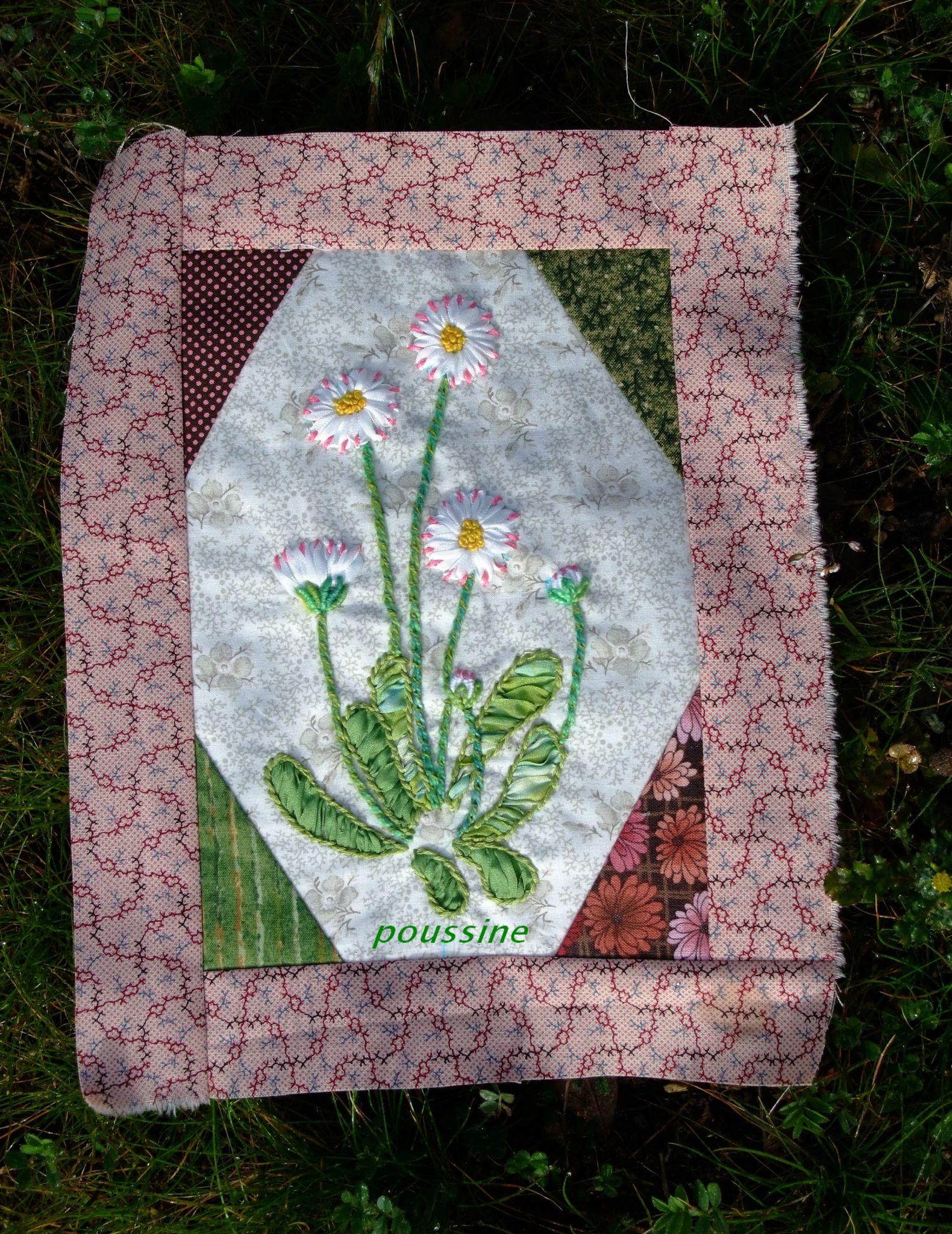 flowers flowers-paquerettes1