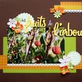 page 1 fruits de l'arbousier
