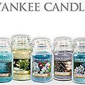 Yankee Can