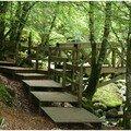 .. sous le bois, enjambez ce petit pont de bois.. il vous emmène