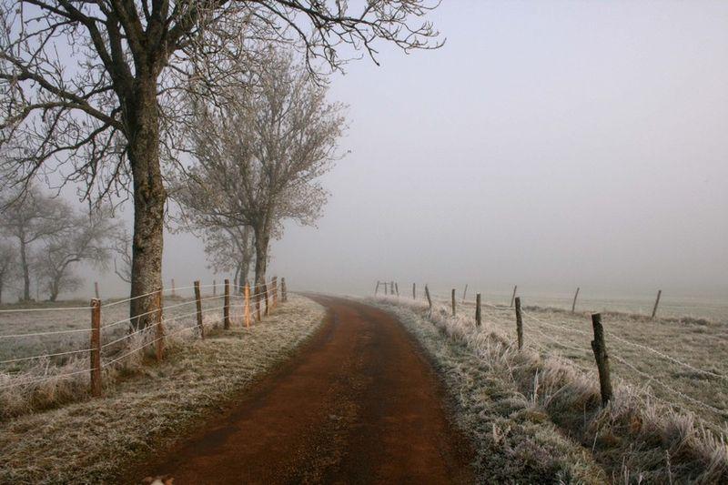 Chemin givré