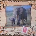 62~Eléphants pour Chris11