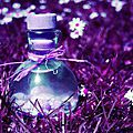 Potion magique: huile d'énergie