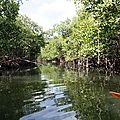 Kayak au village de la Poterie