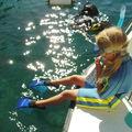 Snorkeling - PMT