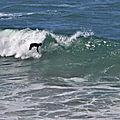 <b>Surfeurs</b> sur le spot de Lostmarc'h, à Crozon, le 22 juin 2020