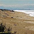plage de Labenne