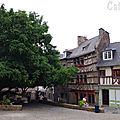 Saint Brie