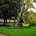 Atmoshère au jardin du Luxembourg.