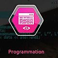 Programmation informatique : pourquoi confier cette tâche à SEDECO ?