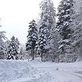 Enfin un vrai paysage d'hiver ...