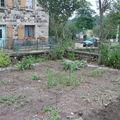 2008 07 13 Une partie de mon jardin