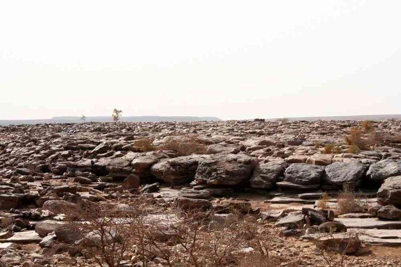 Seckasysteme-Mauritaniemauritania%202007%20031_jpg_rs