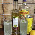 Frozen gin menthe citron
