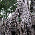 cambodge 2 (71)