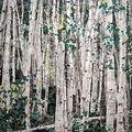 La forêt d