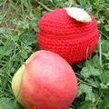 Housse pour ma pomme