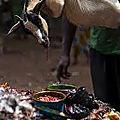 medecine traditionnele maitre marabout soglo