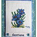 317 gentiane pour Tortue