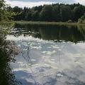Reflets aux 4 lacs
