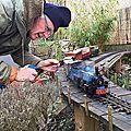 Prunus light railway chronicles.(partie 26) une après midi de chauffe!