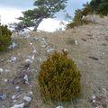 2009 09 19 Paysage depuis le Col des Limouches (2)
