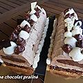 Bûche chocolat praline
