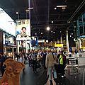 Ginger_d_ambule_dans_l_immense_a_roport__Schipol_d_Amsterdam